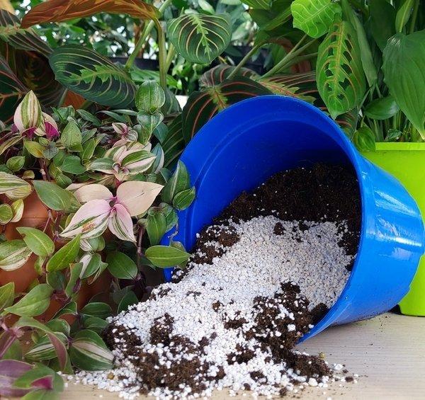 perlit ogrodniczy co to jest