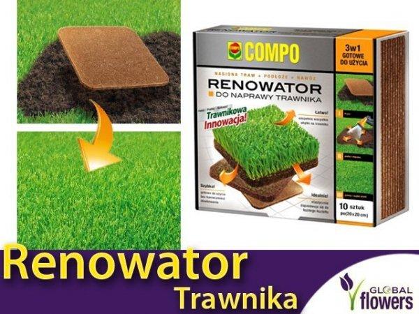 INNOWACJA Renowator do naprawy trawników. Nasiona traw + podłoże + nawóz. 10szt