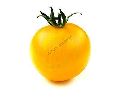 Pomidor doskonały do sałetek