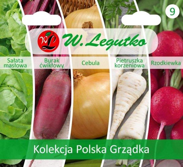 Jakie warzywa warto uprawiać