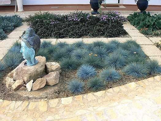 pielęgnacja traw ozdobnych w ogrodzie
