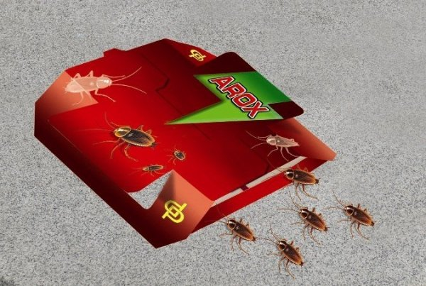 Pułapka na karaluchy