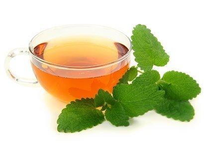 Herbatka z melisy