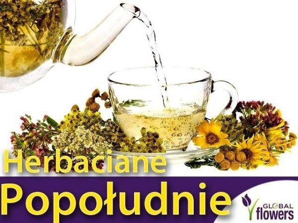 Herbaciane Popołudnie (Mix Ziół) 1g
