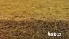 Materac LUX KOMFORT line  KOKOS-PIANKA Pur -KOKOS 120/60/8,5 cm FIKIMIKI
