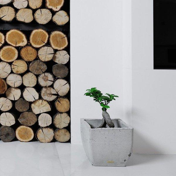 Orbis to połączenie nowoczesnego kształtu z naturalnym, ekologicznym materiałem