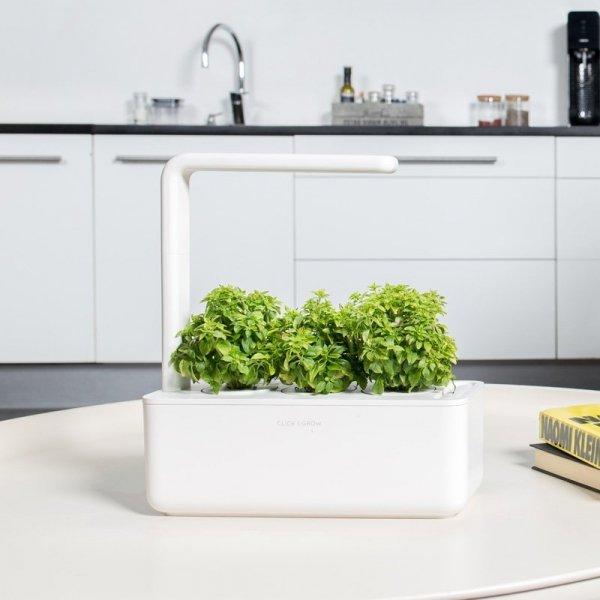 Doniczki Click and Grow to pomysł na zioła i warzywa przez cały rok