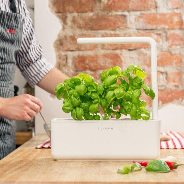 Doniczki Smart Garden to inteligentana uprawa ziół i warzyw w domowym zaciszu