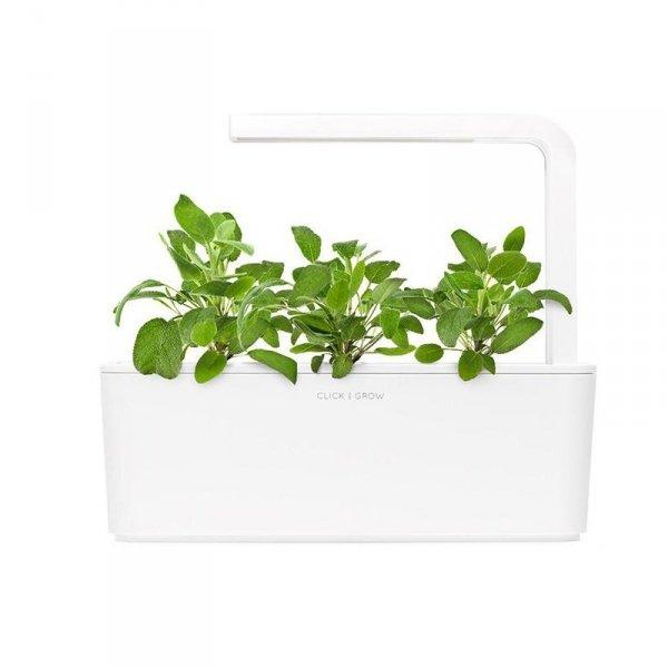 Nowatorskie doniczki Smart Garden z kapsułkami roślinnymi Click and Grow