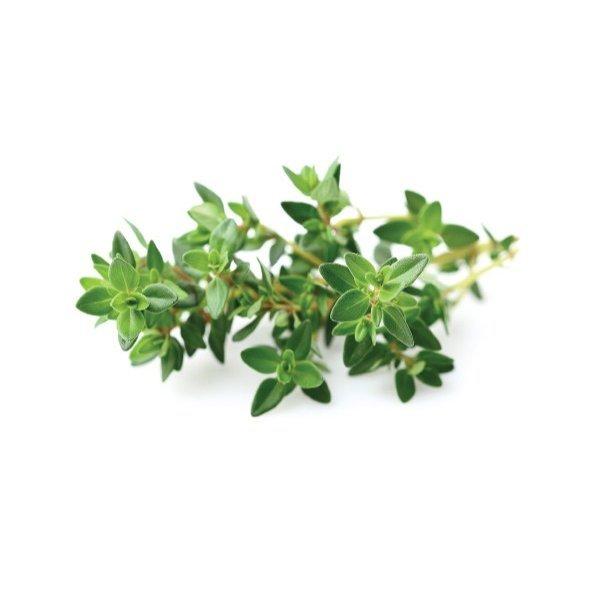 Smart Garden Click and Grow to nie tylko piękne rośliny przez cały rok ale także świeże zioła