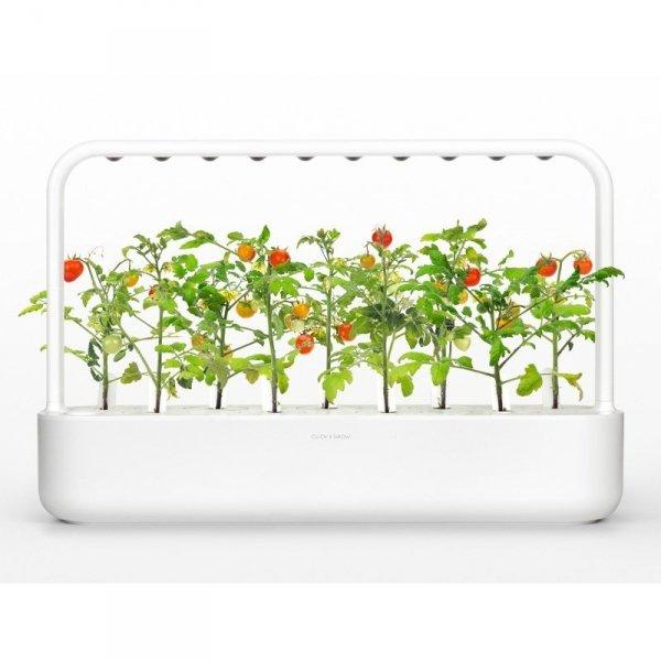 smart garden to system samopodlewający z lampą led