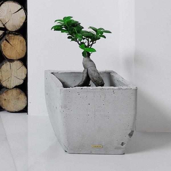 Nowoczesne doniczki wykonane z betonu