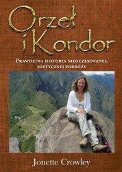 Orzeł i Kondor Prawdziwa historia nieoczekiwanej, mistycznej podróży.