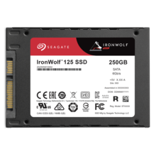 Seagate IronWolf 125 SSD 250GB ZA250NM1A002