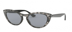 Ray Ban RB 4314N 1250Y5