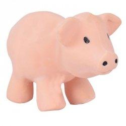 Tikiri, gryzak kauczukowy zabawka z grzechotką, świnka