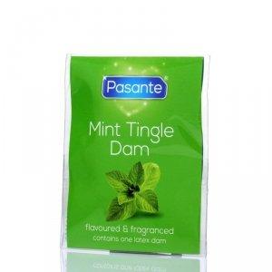 Pasante Mint Tingle Bulk - Prezerwatywy smakowe (144 szt.)