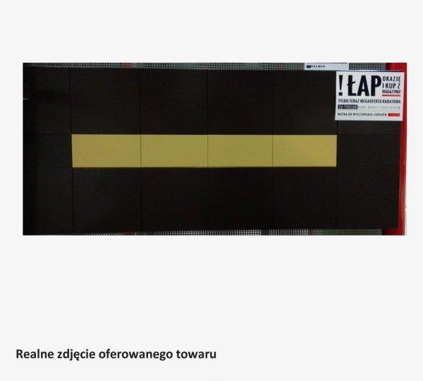 Grzejnik Projectclima MILANO 500x1200 BRĄZOWY RAL8019 moc 907W