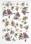 decoupage-flowers-buds-leaves-rose-roses-garden-bouquets-R0141
