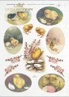 Easter, chickens, flowers, spring, eggs, Easter eggs, R308