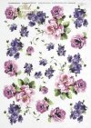 róża, róże, ogród, kwiat, kwiaty, kwiatki, kwiatuszki, R093