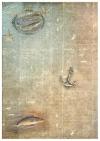 Papiery do scrapbookingu w zestawach - Morska ekspedycja * Scrapbooking papers in sets - Nautical expeditionPapiery do scrapbookingu w zestawach - Morska ekspedycja * Scrapbooking papers in sets - Nautical expedition