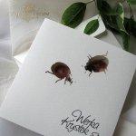 Einladungskarten / Hochzeitskarte 01731_44_Marienkäfer