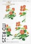 Papier ryżowy ITD R0125