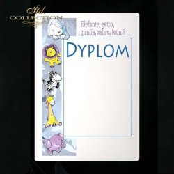 dyplom DS0142