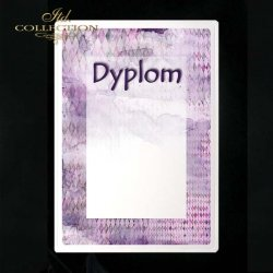 dyplom DS0221