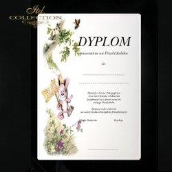 Dyplom pasowania Zajączek