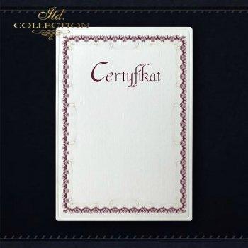 диплом DS0294 универсальный сертификат