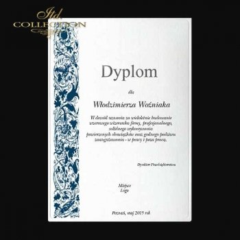 Diplom DS0340