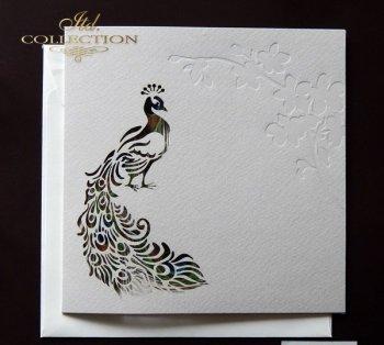 Einladungskarten / Hochzeitskarte 1724_99_Pfau