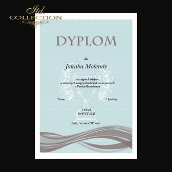 Diplom DS0328