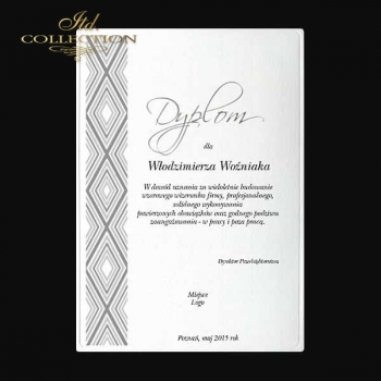 diploma DS0337 for business