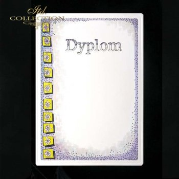 dyplom DS0264