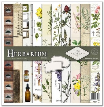 Zestaw do scrapbookingu SLS-035 Herbarium