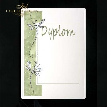 dyplom DS0102