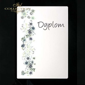dyplom DS0075