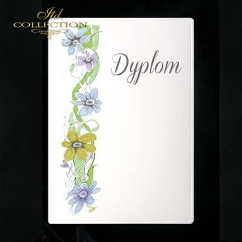 dyplom DS0080
