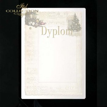dyplom DS0047