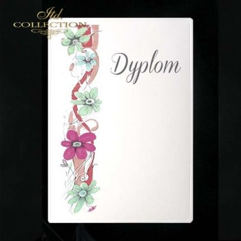 dyplom DS0077