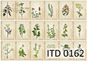 Papier decoupage ITD D0162M
