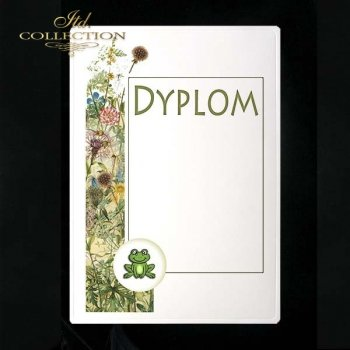 dyplom DS0249