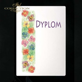 dyplom DS0226