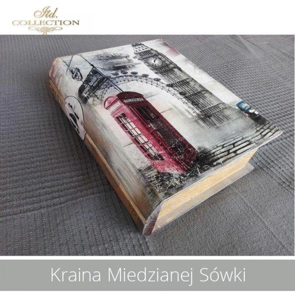 20190728-Kraina Miedzianej Sówki-R0841-example 01