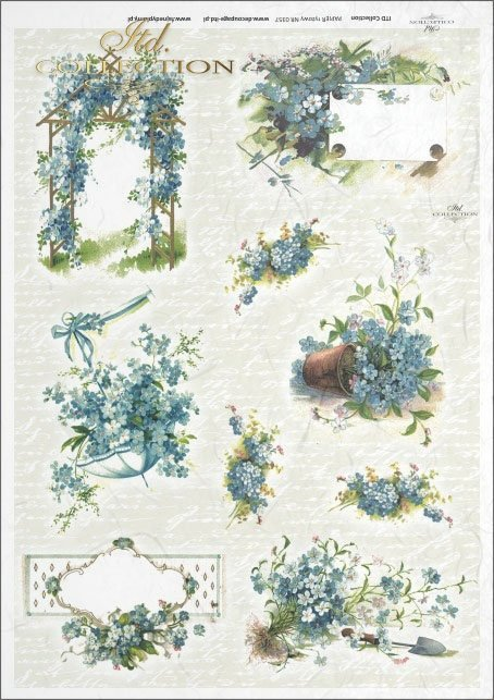 flower, flowers, forget-me-not, forget-me-not flower, bouquet, bouquets, flower basket, baskets, R357