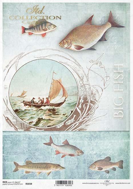 Arroz peces de papel*Rýžový papír ryby*Reispapier Fisch