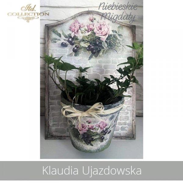 20190725-Klaudia Ujazdowska-R1103-example 03